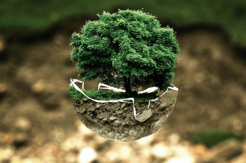 Gestió de residus: reptes i oportunitats per a un futur verd