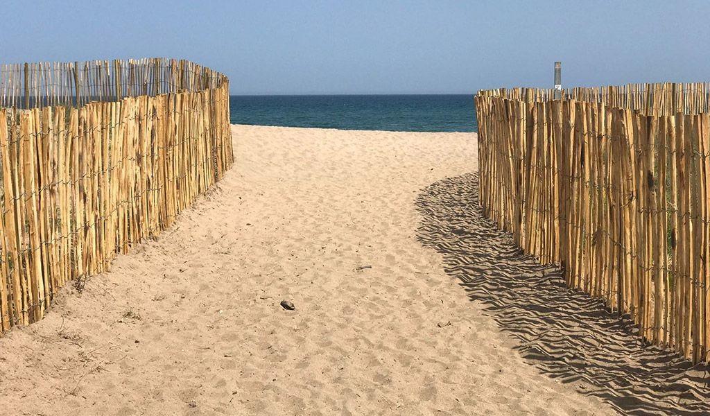 Recuperació i protecció de sistemes dunars al Parc Natural dels Aiguamolls de l'Empordà